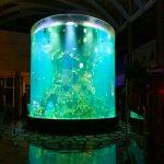 ჩინეთის საბაჟო იაფი სუპერ დიდი მრგვალი pmma მინის აკვარიუმები ნათელი ცილინდრიანი აკრილის თევზი ტანკები