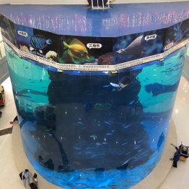 20 მმ-დან 500 მმ სისქის აკრილის პანელები თანამედროვე დიდი თევზისთვის