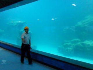 მსახიობი კედლის UV აკრილის პანელი აკვარიუმი, ოკეანარია