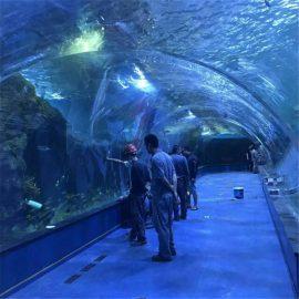 აკრილის გვირაბის oceanarium პროექტი საჯარო აკვარიუმებში